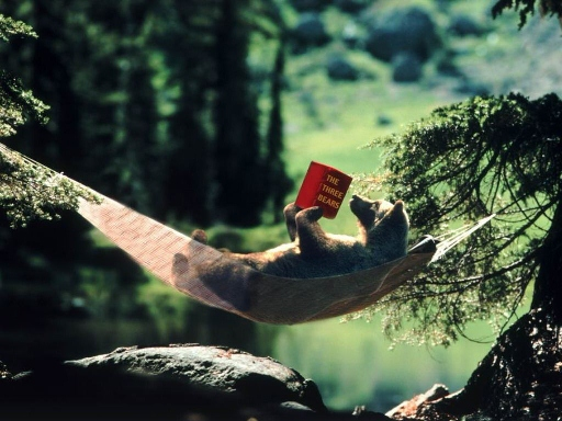 IMAGE(http://www.huckaby.us/Files/bear_reading_in_wild.jpg)